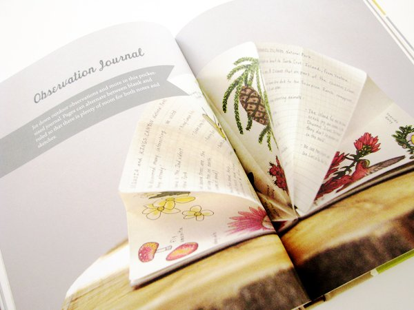 Handmade Books For Everyday Adventures Inside3