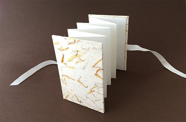 Mini Accordion Book
