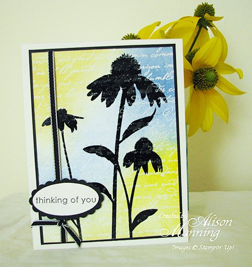 Rubber Stamped Cone Flower Card