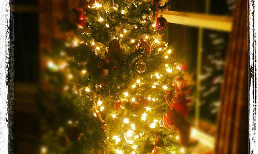 Holiday Tree Instagram