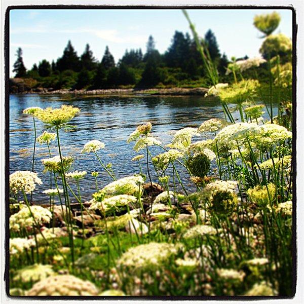 Maine Vinal Haven