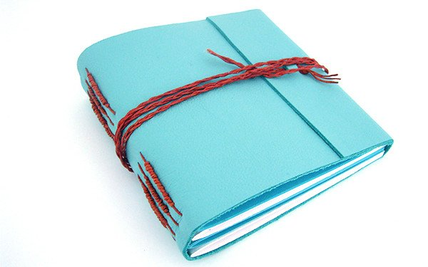 Book 2 Blue Leather Tacketed with Packing on Spine