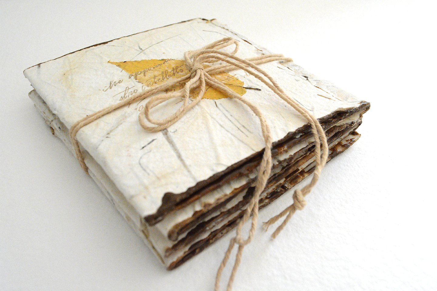 encaustic artist book
