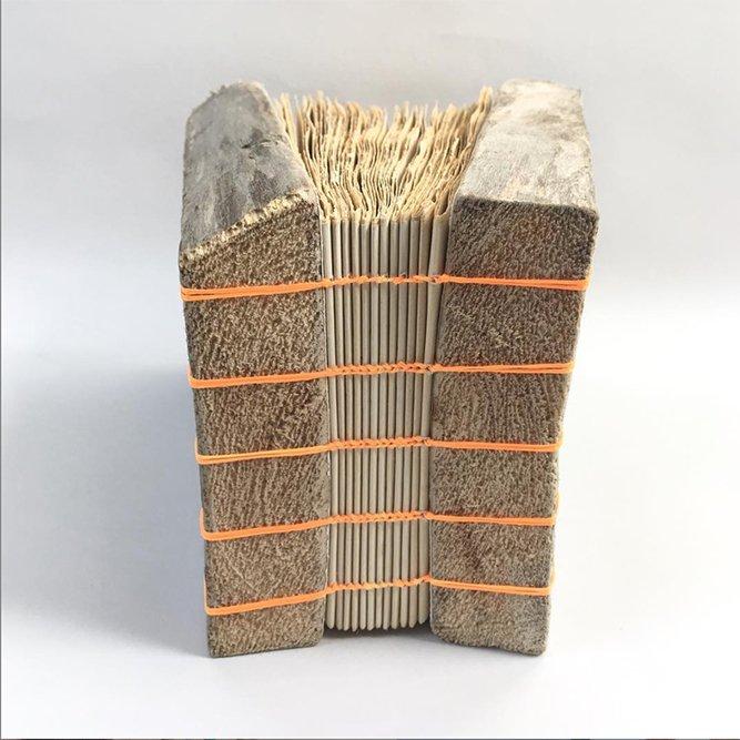 Joanna Caskie Driftwood Book