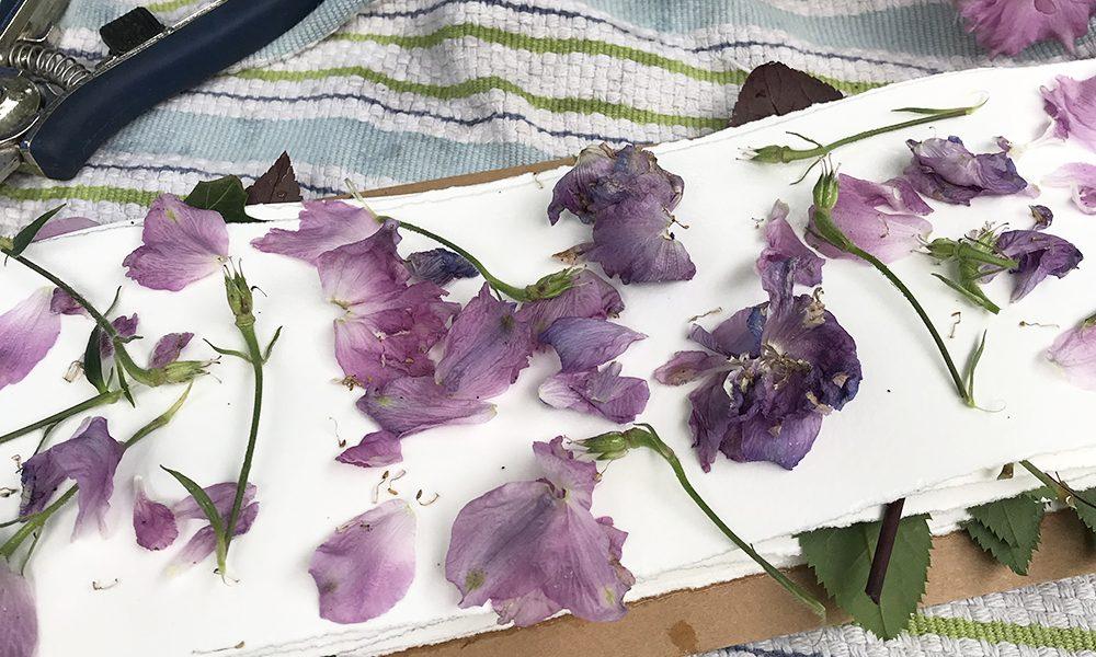 Eco printing delphinium petals